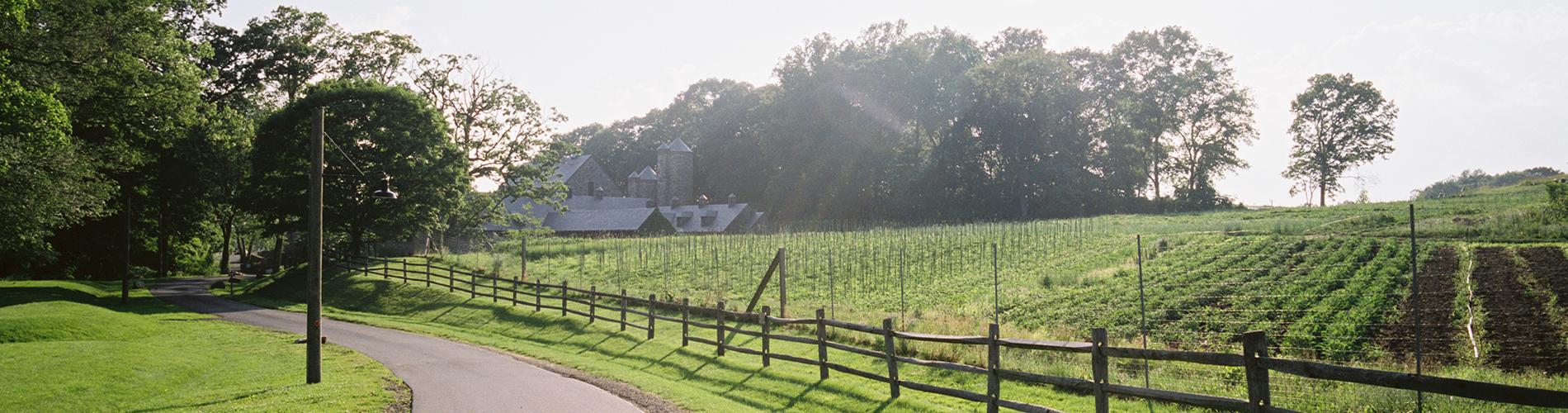 Stone Barns photo